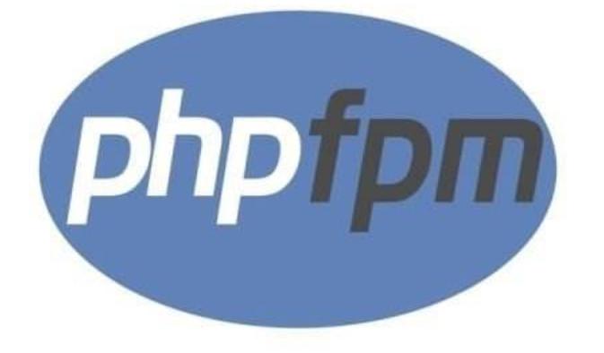docker php-fpm容器自动退出,自制php-fpm7.4.1镜像,启动后退出